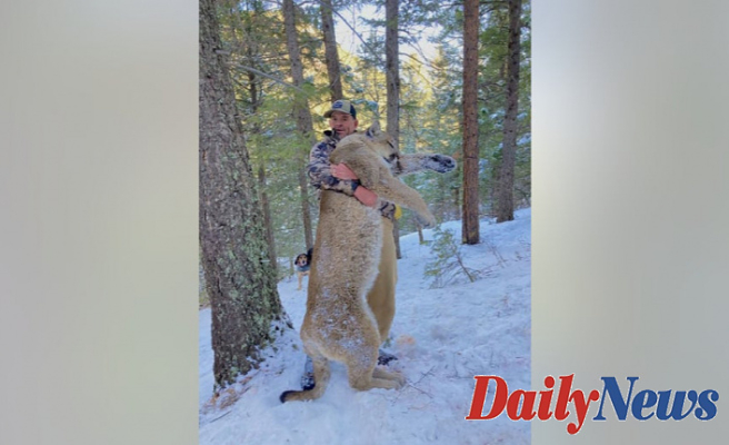 Capitol riot suspect on house arrest after allegedly killing mountain lion