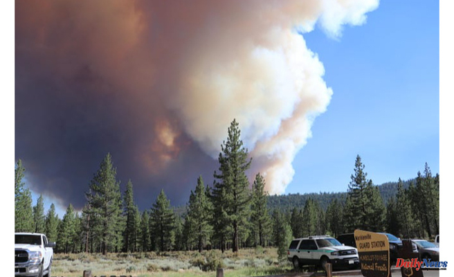 California's Tamarack Fire is rapidly growing; evacuations are required