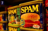 Share Hormel Foods: Spam meat for the Price