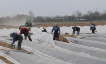 The european Commission calls for opening of borders for seasonal workers