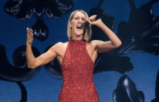 Celine Dion cancels his concerts in Las Vegas for muscle spasms
