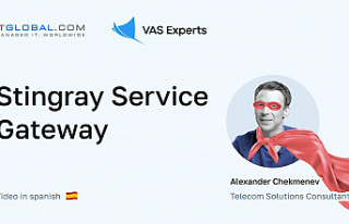 What is Stingray Service Gateway