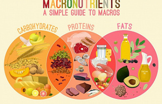 How To Count Macros For Weight Loss - What Is The...