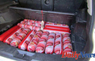 CBP confiscates Almost 200 Pounds of bologna Located...