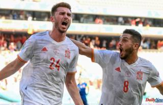 Slovakia 0-5 Spain Martin Dubravka Howler takes part...