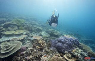 Australia defers UNESCO's downgrading of Great...