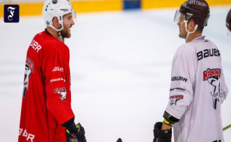 The sharks on the ice: The ice-hockey site in Cologne, Germany is shaking tremendously