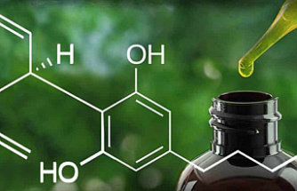 What is CBD and why is it becoming popular?
