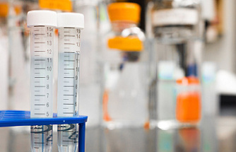 What are the Irrefutable Advantages of Using Synthetic Urine?
