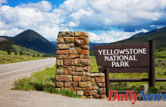 Yellowstone, Grand Teton national parks to resume bus operations