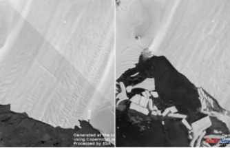 Time-lapse video Reveals the ice shelf of one of Antarctica's largest glaciers breaking into large chunks