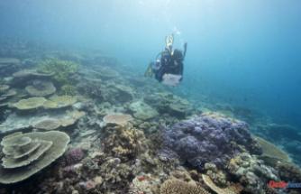 Australia defers UNESCO's downgrading of Great Barrier Reef
