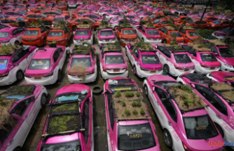 Mini-gardens are installed on the roofs of Thai taxis to make them greener