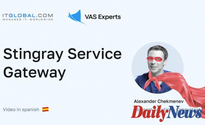 What is Stingray Service Gateway